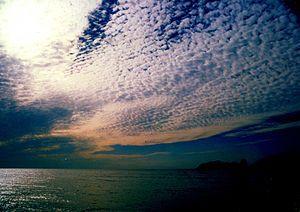 巻積雲.jpg