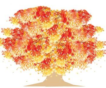 秋の壁面 高齢者1.jpg