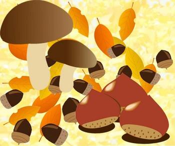 秋の壁面 高齢者4.jpg